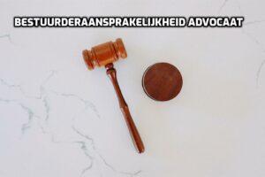 Wet Bestuur en Toezicht Rechtspersonen bestuurdersaansprakelijkheid